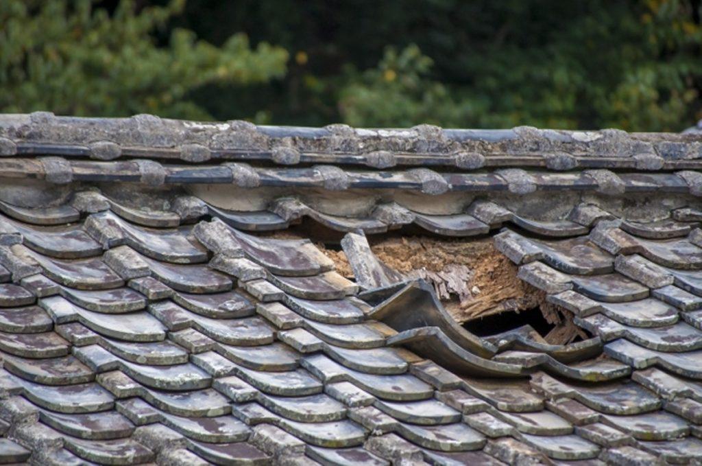破損した屋根瓦